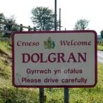 Dolgran-587