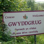 Gwyddgrug-639